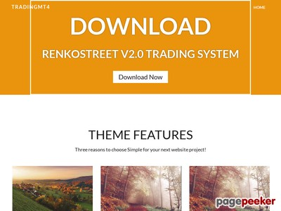 RenkoStreet V 2.0 Trading System | Simpler and Lighter