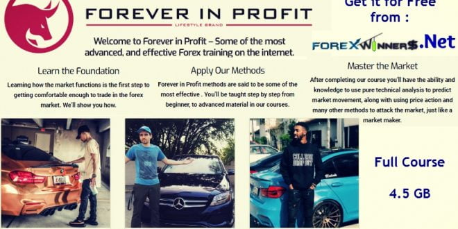 Forever in Profit 3 full courses