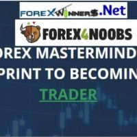 Forex4noobs Price Action Trading Course | Forex Winners